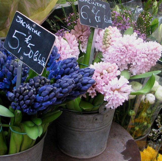 frenchflowermarketfromwillows95988wheninparisi