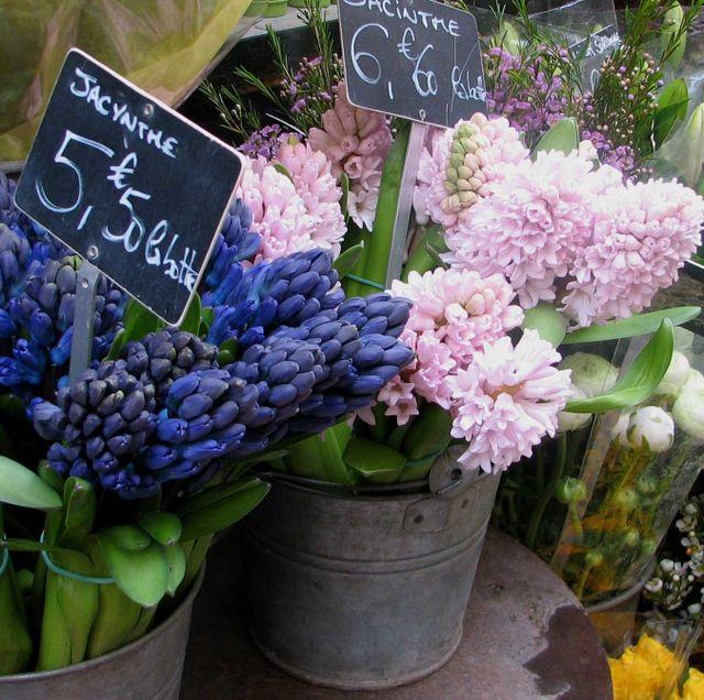 frenchflowermarketfromwillows95988wheninparisi